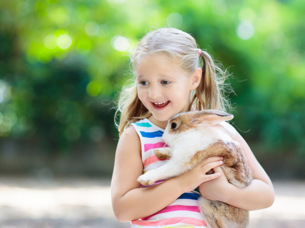 Rabbits and Small Mammals Veterinary Services in South Dartmouth, MA
